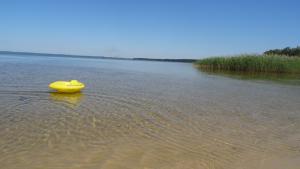 Baignade enfant lac cazaux-sanguinet