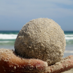 Grain de dune. Atelier pour enfant sur le Dune du Pilat