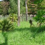 Zoo bassin d'arcachon. Photo Le Bassin des Petits
