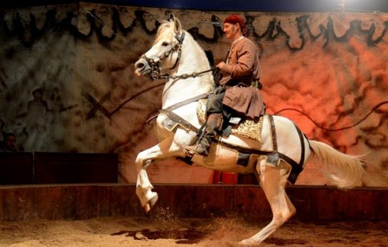 spectacle-equestre-andernos